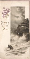 SINCERE GOOD WISHES in gilt below purple pansies left, seascape right jagged cliff & rough sea, birds fly