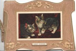 BEST WISHES below inset of 2 kittens framed by wide brown designed border