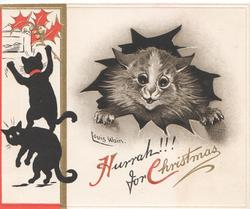 HURRAH FOR CHRISTMAS, cat looks front through torn perforation in sheet, 2 black cats left hanging picture & holly