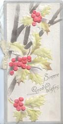 SINCERE GOOD WISHES right, berried holly left, grey background & margins