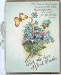 WITH THE BEST OF GOOD WISHES in gilt, forget-me-nots below butterfly & verse
