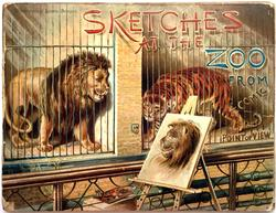 SKETCHES AT THE ZOO FROM A COMIC POINT OF VIEW