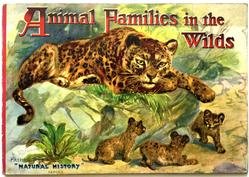 ANIMAL FAMILIES IN THE WILDS