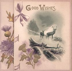 GOOD WISHES in gilt over stag & hind on snowy hillside above gilt thistles
