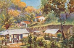 CHACARA PINHEIRO, RIO VERMELHO