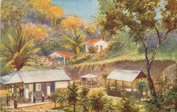 CHACARA PINHEIRO. RIO VERMELHO