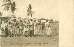 GROUP OF COOLIE IMMIGRANTS