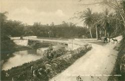 THE MARTHA BRAE RIVER AND BRIDGE, TRELAWNY