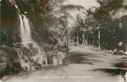 ROADSIDE SCENE, ST. THOMAS
