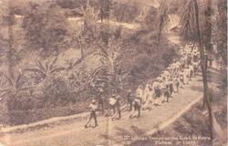 ST. LUCIAN TROOPS ON THE ROAD TO MORNE FORTUNE