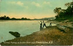 SALMON FISHING ON ST. JOHN RIVER NEAR FREDERICTON, N.B.