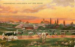 UNGARISCHES LANDLEBEN: AUF DER WEIDE  many cows & shallow pond in front of village