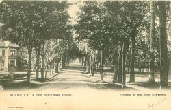 A VIEW DOWN PARK STREET
