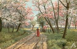 woman walks away down road lined by blossom trees