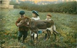 LOOK PLEASANT  three children & calf