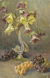 grapes on table, ornate vase of white & purple Canterbury bells