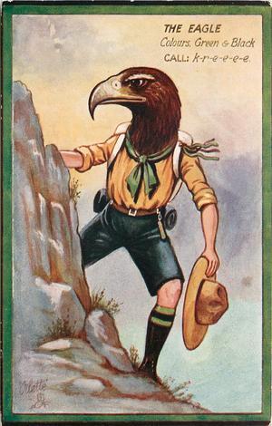 THE EAGLE   COLOURS. GREEN & BROWN.   CALL: K-R-E-E-E-E