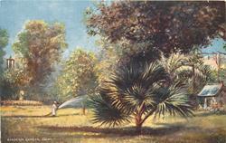 ESBEKIEH GARDEN, CAIRO