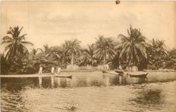 ON THE LAGOON NEAR LAGOS