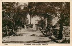 PALM AVENUE, MAGNETIC ISLAND
