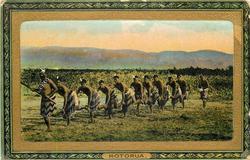 ROTORUA  HAKA AT NGAPUNA  line of dancers face left