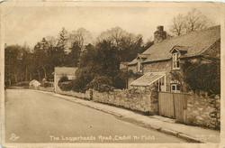 THE LOGGERHEADS ROAD