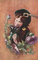 highland lass holding bouquet to mouth, large thistle to left