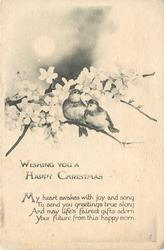 WISHING YOU A HAPPY CHRISTMAS  two birds sit on branch in blossom