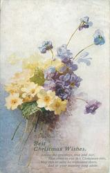 BEST CHRISTMAS WISHES  bouquet of blue violets and yellow primroses
