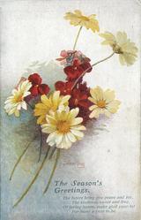 THE SEASON'S GREETINGS  yellow & white daisies, red wallflowers