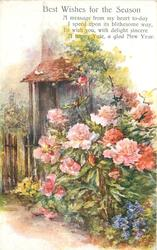 BEST WISHES FOR THE SEASON  (pink peonies in front of cottage door)