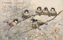 CHRISTMAS GREETINGS  (seven blue-tits on branch)
