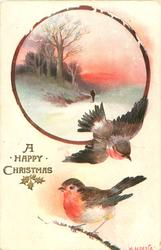 circle insert of man walking in snow, trees left, 2 robins below, one flying one on branch