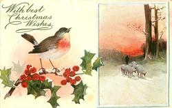 oblong inset right, 6 sheep and man, snow scene , robin left on holly branch