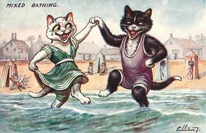 white and black cats holding paws and dancing in sea