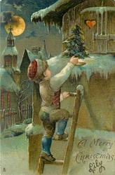 A MERRY CHRISTMAS  child climbs up ladder to place small Xmas tree, moonlight
