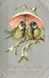 A BRIGHT AND HAPPY NEW YEAR   2 tits on twigs under umbrella that is pink below white on top, silver background