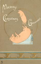 MERRY CHRISTMAS GREETINGS  baby pig balances on larger pig's back hooves