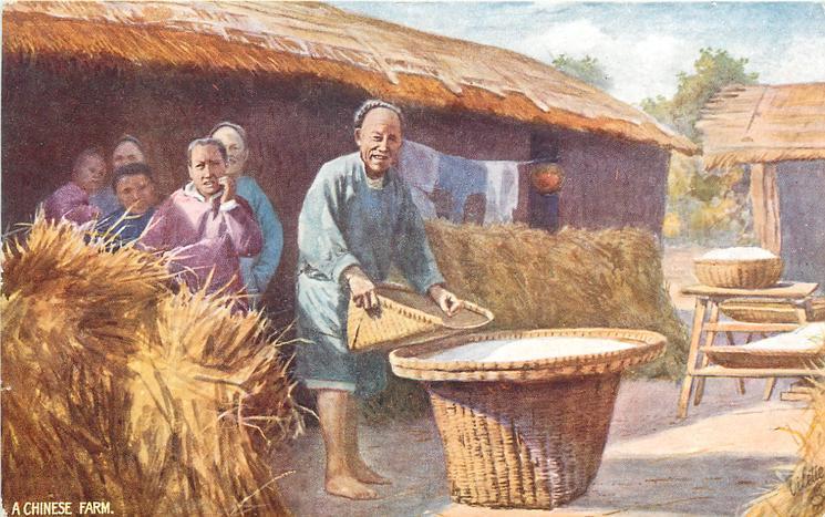 A CHINESE FARM