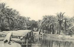 "ACROSS THE ""KORA"", BASRA"