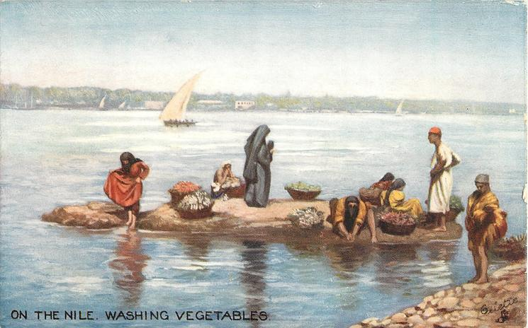 ON THE NILE WASHING VEGETABLES