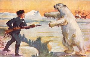 NELSON 'S ENCOUNTER WITH  A POLAR BEAR