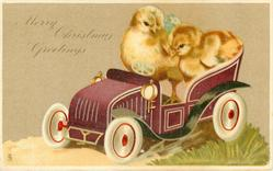 MERRY CHRISTMAS GREETINGS  two chicks in deep purple toy car