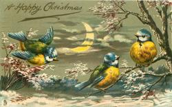 A HAPPY CHRISTMAS three blue-tits in snow scene, partial moon