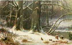 A HAPPY CHRISTMAS TO YOU  two rabbits in snowy wood scene, two stumps lower right
