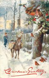 six robins right, boy follows donkey coming forward, snow scene