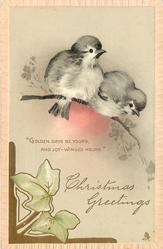 CHRISTMAS GREETINGS two birds above, ivy below