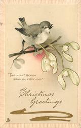 CHRISTMAS GREETINGS  bird & mistletoe above