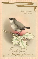 TO WISH YOU A HAPPY CHRISTMAS SEASON   bird on holly sprig