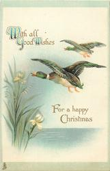 WITH ALL GOOD WISHES FOR A HAPPY CHRISTMAS  two mallards flying